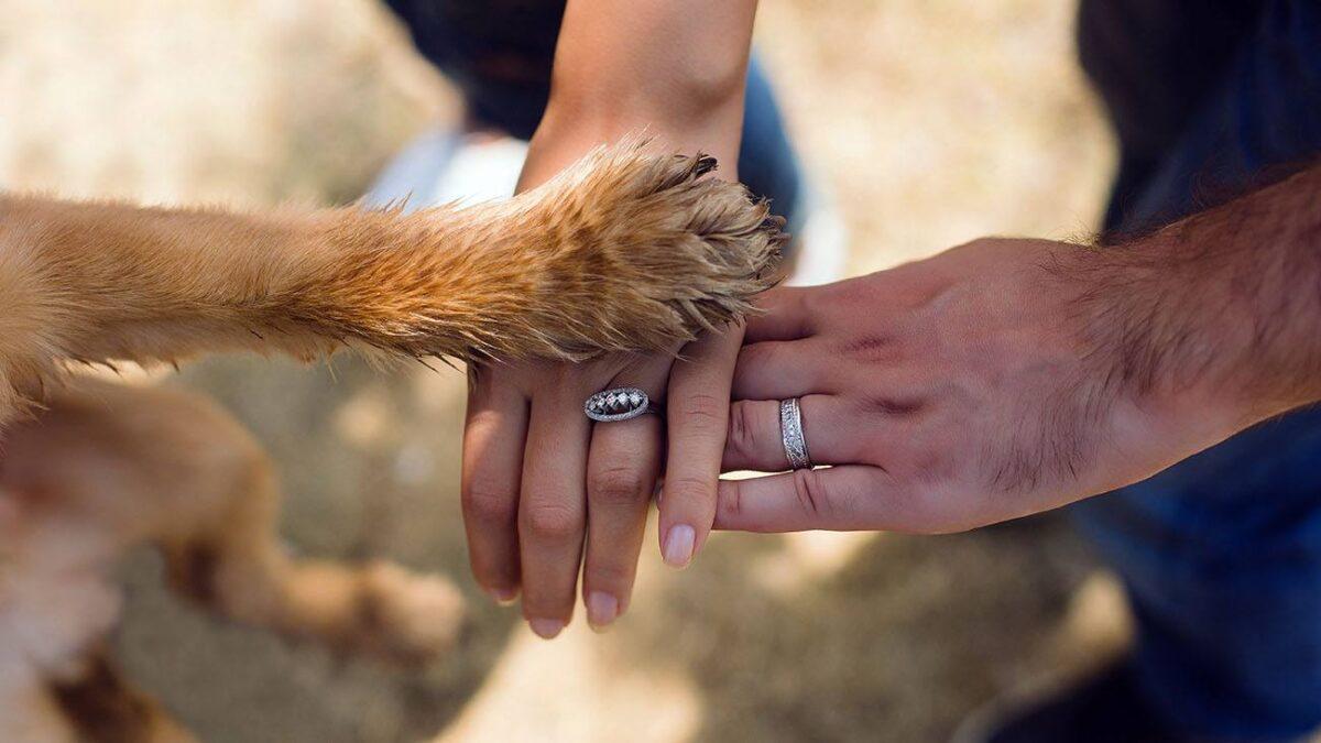 پنجه سگ با ناخن های کوتاه روی دست زن و مرد