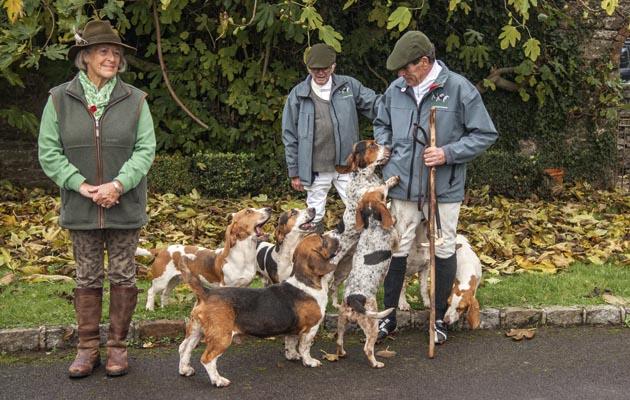 گروه سگ های شکاری