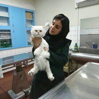 دکتر محیا نورمنور